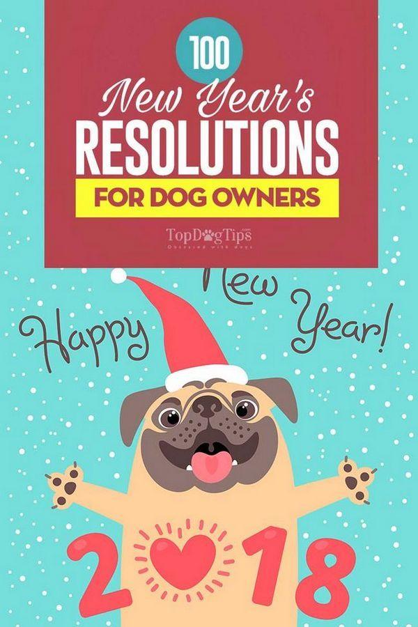 100 Risoluzioni del nuovo anno per i proprietari di cani
