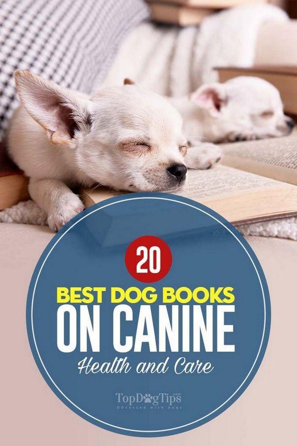 20 Migliori libri per cani sulla salute e la cura dei cani