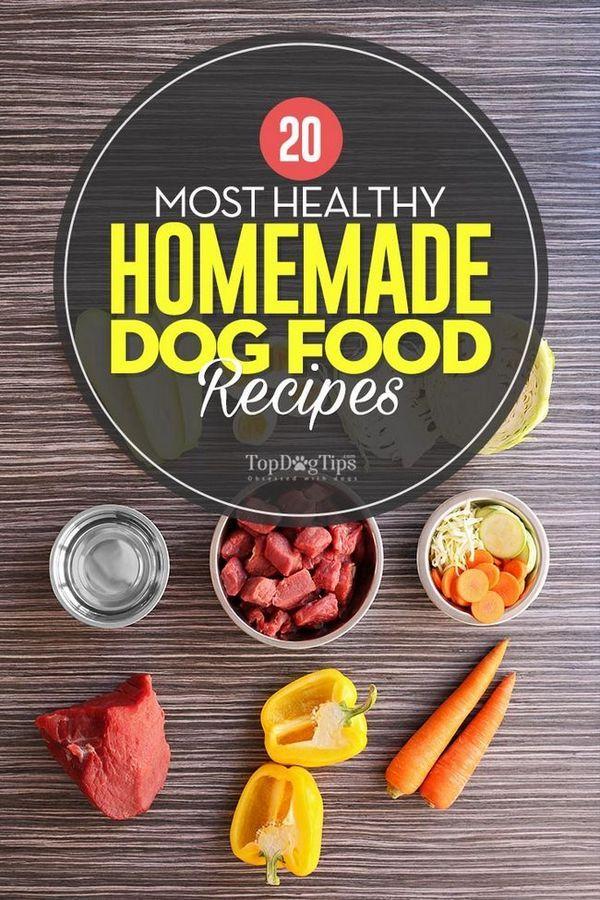 20 Ricette di cibo per cani fatte in casa più sane