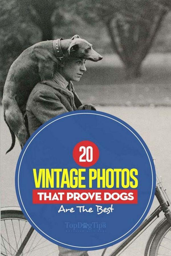 Le 20 migliori foto d`epoca che dimostrano di essere i migliori