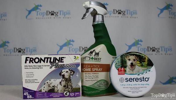 Best Flea & Tick trattamento per cani di confronto