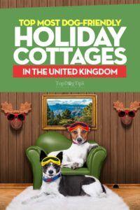 32 Case vacanze per cani nel Regno Unito
