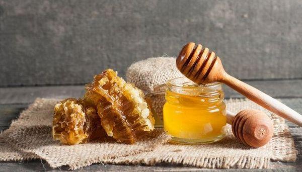 I migliori prodotti di api per cani