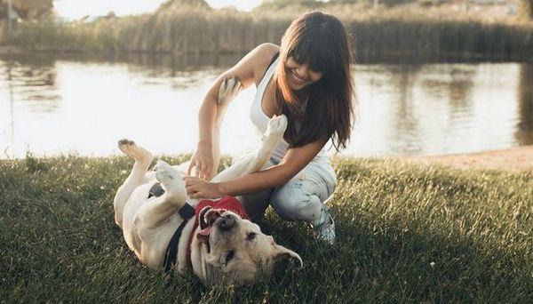La proprietà del cane in 4 modi rende felici le persone (basate sulla ricerca)