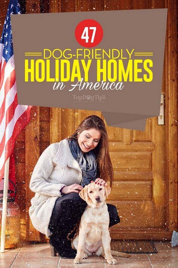 47 Case per le vacanze con cani negli Stati Uniti