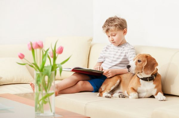 5 Libri per cani indispensabili per bambini