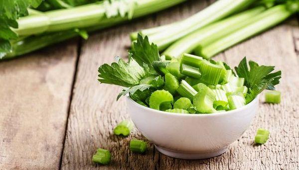 I cani di verdure possono mangiare