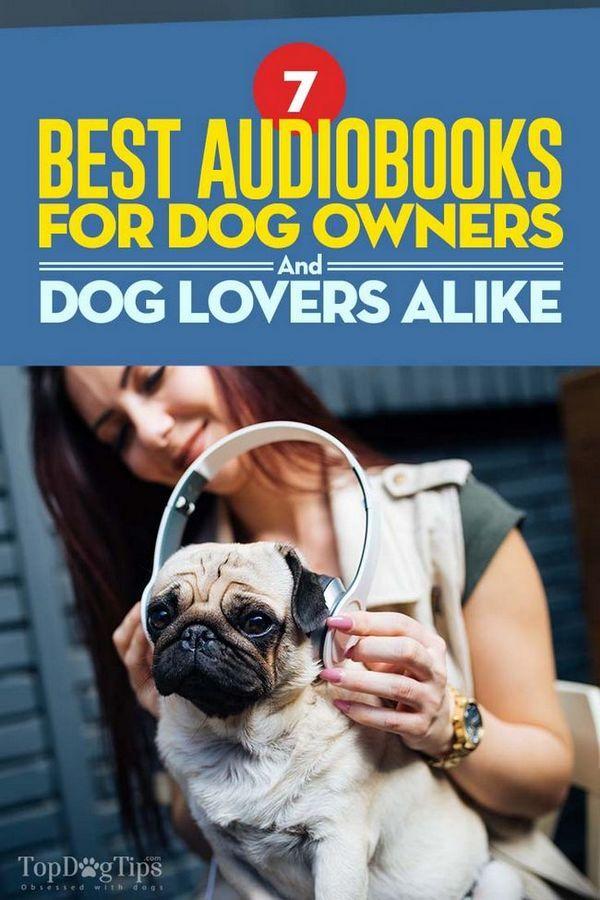 7 Migliori audiolibri per proprietari di cani e amanti dei cani