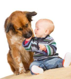 Uno studio mostra come i cani possono migliorare la salute dei bambini piccoli