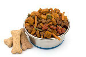 Le migliori offerte di cibo per cani online