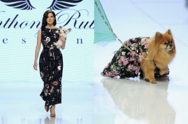 Norbert The Dog è salito sul palco della LA Fashion Week!