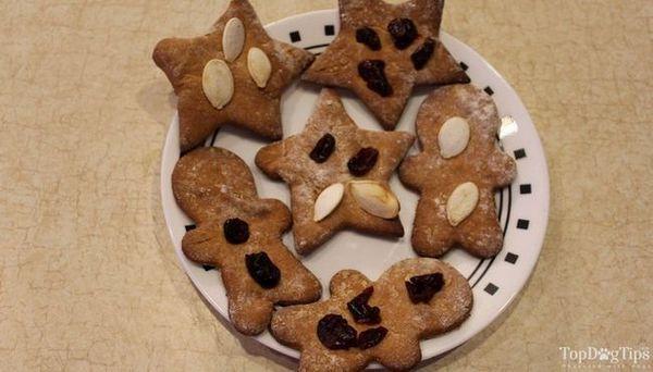 Ricetta di ossequio per cani di Natale con semi di zucca e mirtilli rossi