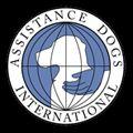 ADI - Certificazione Dog Trainer: una guida per principianti