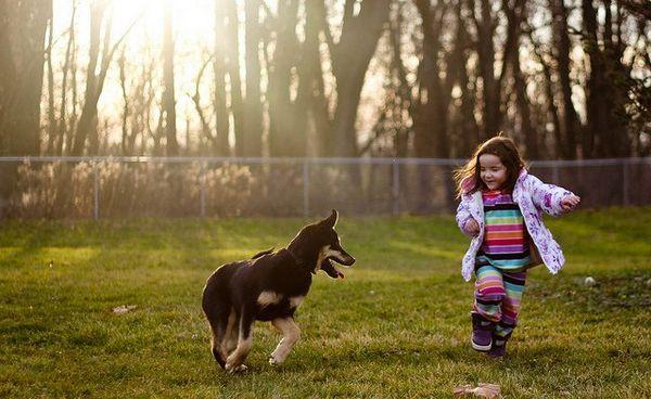 Prodotti per cani essenziali per proprietari di cani con bambini