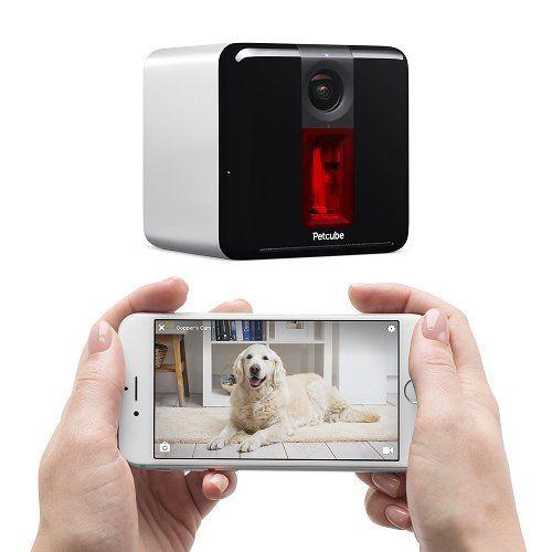 Giveaway: petcube play dog camera ($ 199 valore)