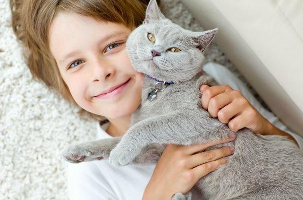 La sovvenzione di Habri aiuta a studiare l`impatto dell`adozione di gatti rifugio da parte di bambini con autismo