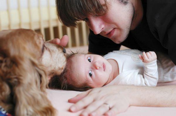 Come presentare il tuo cane a un nuovo bambino