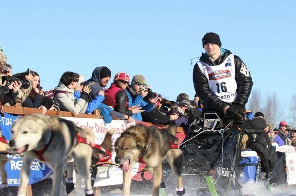 Il muso di Iditarod i cui cani sono risultati positivi ai test antidroga suggeriscono il sabotaggio