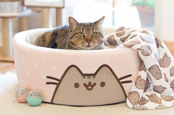 Internet grasso gatto sensazione raccolta di Pusheen venire a Petco