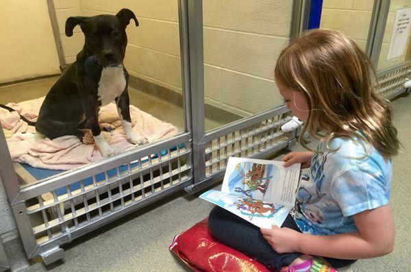 I bambini che hanno un tempo libero leggono gli ascoltatori attenti nei cani