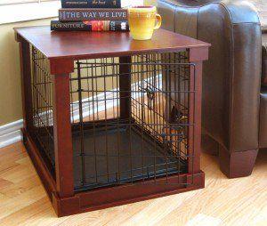 Deve avere forniture per cani che ogni proprietario di cane dovrebbe avere