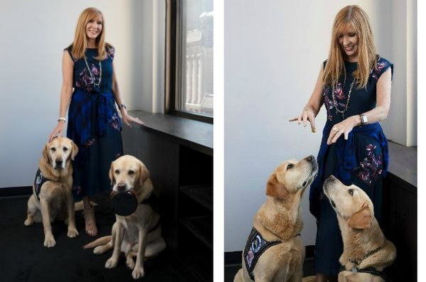 Nicole Miller ha progettato prodotti a beneficio del programma Puppies Behind Bars