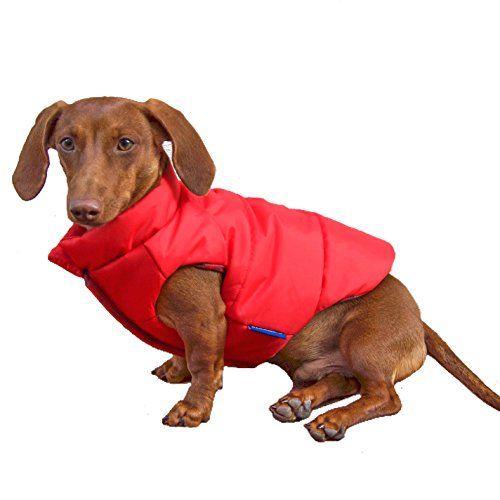 Recensione: django reversible puffer dog coat (2018)