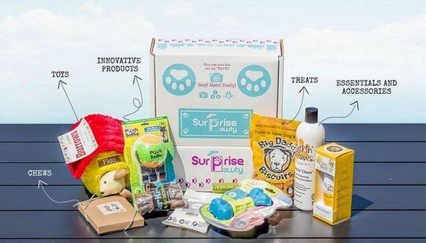 Recensione: scatola di abbonati sorpresa pawty dog (2018)