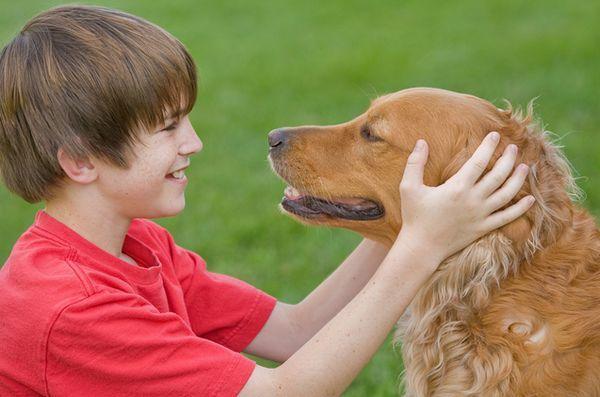 Studio: i cani di famiglia sono a beneficio dei bambini con disabilità