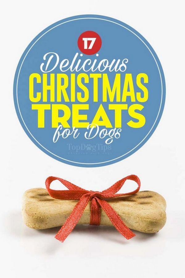 Top 17 dolcetti natalizi per cani