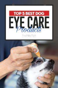 I 5 migliori prodotti per la cura degli occhi per cani