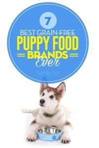 Le migliori marche di cibo per cuccioli senza cereali