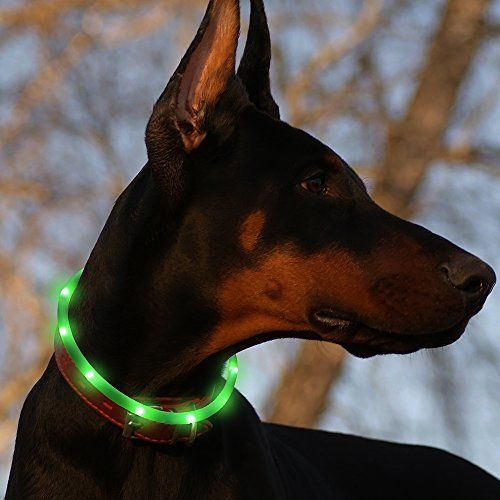 Collare per cani BSeen LED Individual Lights