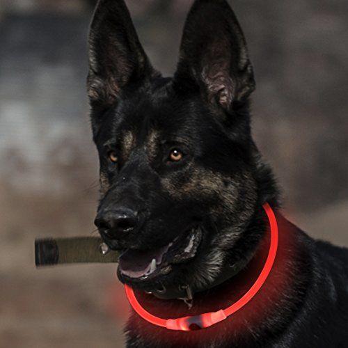Collare per cani incandescente BSeen LED